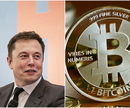 Musk Bitcoin.png